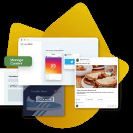 Content Management Services